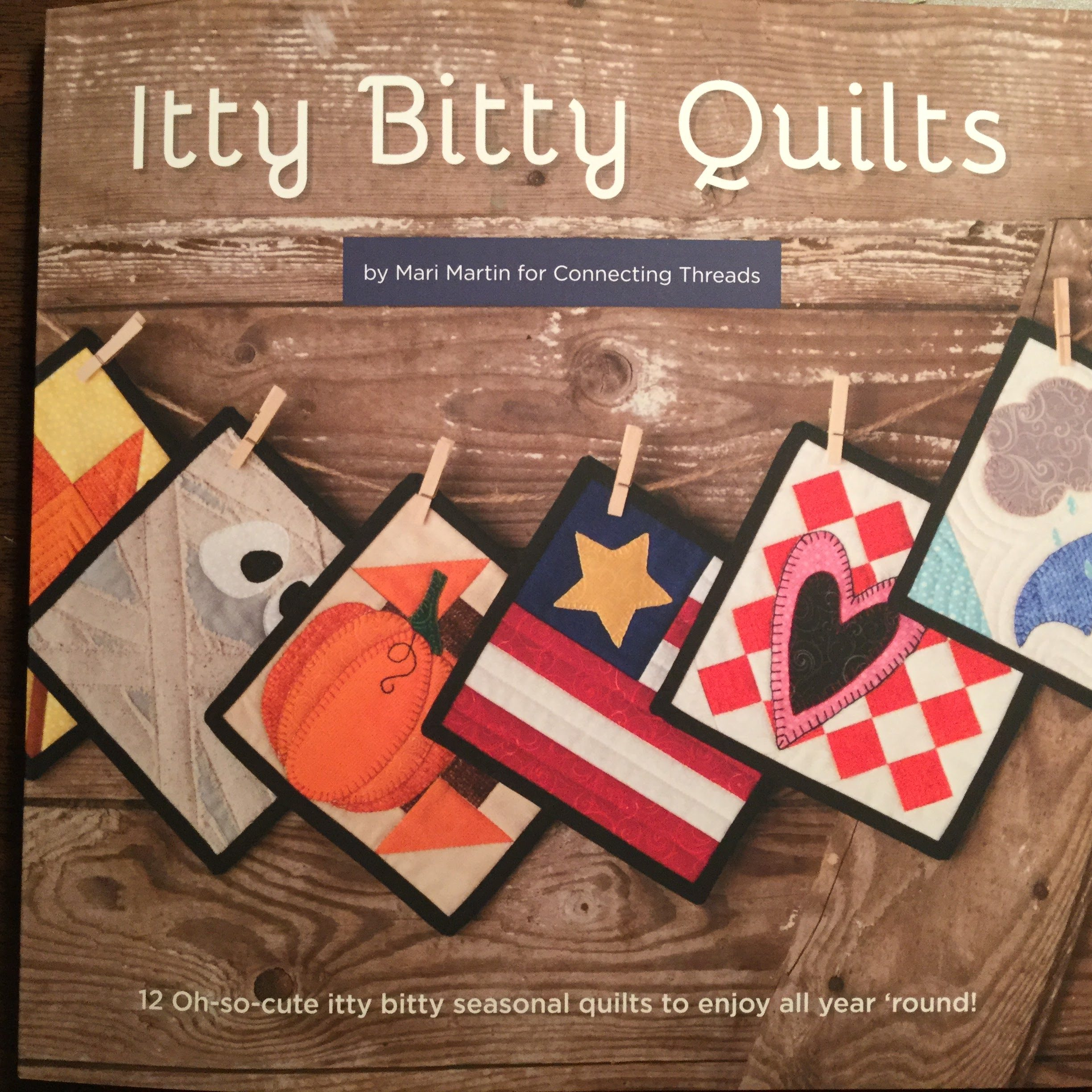 best book for easy miniature quilt block patterns itty bitty